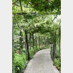 Gartenperspektive