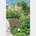 Anregungen für den eigenen Garten