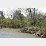 Überall auf dem Stellplatz in Rendsburg, kann man noch die Folgen des letzten Sturmes sehen.